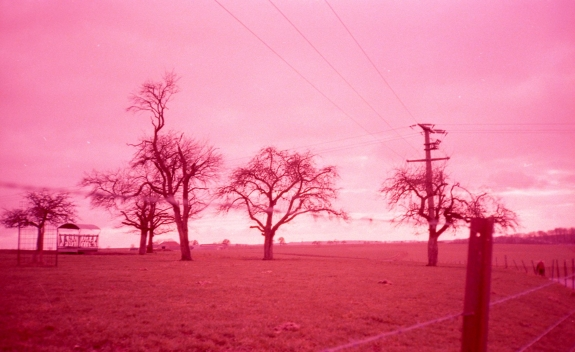 Lomography Colorsplash met Lomography X Tungsten film.